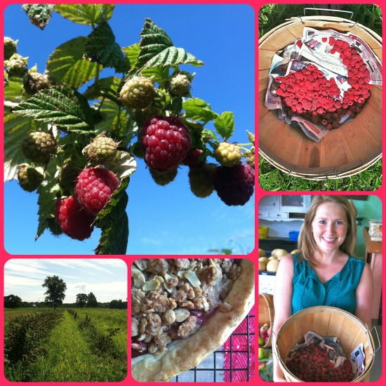 Picking raspberries at a local berry farm. The ones I didn't eat on the way home made it into a raspberry pie.